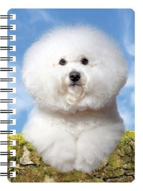 Bichon Frise 3D Notebook